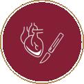 Chirurgie Cardiovasculara